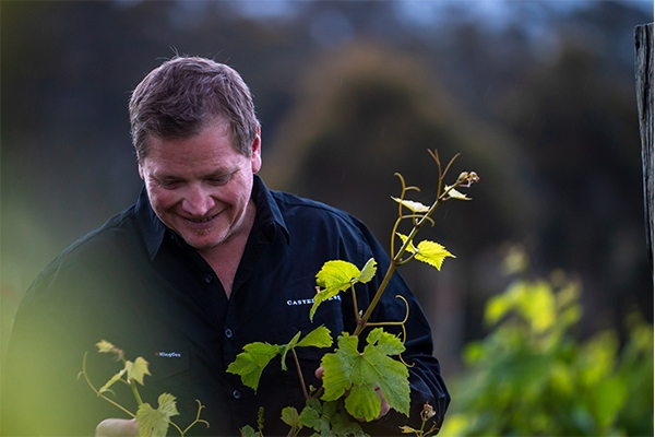 Introducing Castelli Estate new head winemaker